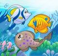 Cute marine animals 2 Royalty Free Stock Photo