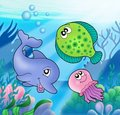 Cute marine animals Stock Image