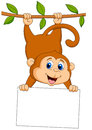 Cute monkey cartoon with blank sign illustration of Royalty Free Stock Photo