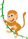 Cute monkey cartoon swinging illustration of Stock Images