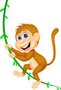 Cute monkey cartoon swinging illustration of Royalty Free Stock Image