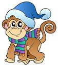 Cute monkey in winter clothes Royalty Free Stock Photo