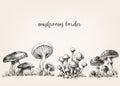 Cute mushrooms drawing Royalty Free Stock Photo