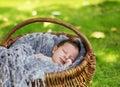 Cute newborn baby sleeping in basket Royalty Free Stock Photo