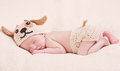 Cute newborn baby sleeps in a knitted hat dogs Royalty Free Stock Image