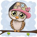 Cute owl in a cap is sitting on a branch