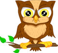 Cute owl cartoon vector illustration of Stock Image