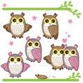 Cute owl feminine illustration set white background Royalty Free Stock Image