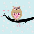 Cute owl an illustration of a Royalty Free Stock Photo