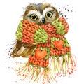 Cute owl T-shirt graphics, snowy owl illustration with splash wa