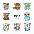 Cute owls birds cartoon set