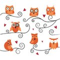 Cute owls on the branch