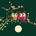 Cute owls in love Royalty Free Stock Photo
