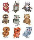 Cute owls Set of vector birds.