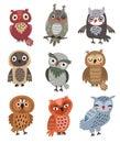 Cute owls Set of vector birds.