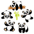Cute panda bear with different emotions on white background