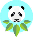 Cute panda in flat style. Fashion illustration of a panda in gre
