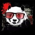 Cute panda on grunge background