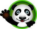 Cute panda head cartoon Stock Photo