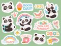 Cute panda stickers. Happy pandas patches, cool animals and winked panda sticker vector illustration set