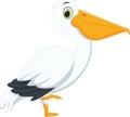 Cute pelican cartoon Royalty Free Stock Photo