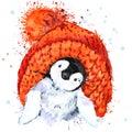 Cute Penguin T-shirt graphics. Penguin illustration with splash watercolor textured background.