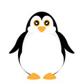 Cute penguin vector of illustration Stock Images