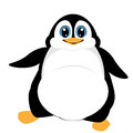 Cute penguin vector of illustration Stock Image