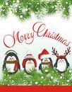 Cute penguins christmas background with fir and penguin Stock Photo
