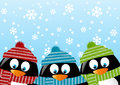 Cute penguins on winter background Stock Photos
