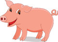 Cute pig Royalty Free Stock Images