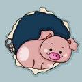 Cute pig peeking through the fence