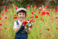 Cute preschool child in poppy field, holding a bouquet of wild f Royalty Free Stock Photo