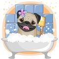 Cute pug dog cartoon in the bathroom Royalty Free Stock Photos