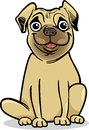 Cute pug dog cartoon illustration of purebred Stock Photo