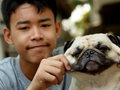Cute pug dog playing outdoor a small white fat lovely together with an asian boy that pull the pugs cheeks making funny face Royalty Free Stock Images