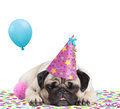 Cute pug puppy dog with party hat lying down on confetti, sticking out tongue, tired of partying, on white background Royalty Free Stock Photo