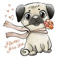 Cute pug with rose
