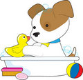 Cute Puppy Bath Royalty Free Stock Image