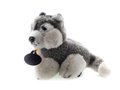 Cute puppy toy shot on white Royalty Free Stock Photo