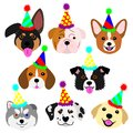 Cute pups face with party hat set set Royalty Free Stock Photo
