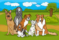 Cute purebred dogs group cartoon illustration of or puppies against rural landscape or park scene Royalty Free Stock Photo
