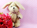 Cute rabbit doll with space for copy background Royalty Free Stock Photo