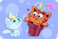 Cute red cat's big surprise Stock Images