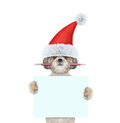 Cute Santa dog holding a pencil and blank Royalty Free Stock Photo