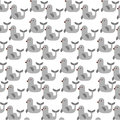 Cute seal pattern background