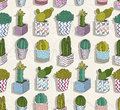 Cute seamless cactus patter background with flowers Royalty Free Stock Images
