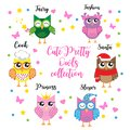 Cute set of girls owls fairy, princess, christmas, cook, fashion and sleeping. Cartoon children`s characters. Vector