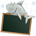 Cute shark character with blank sign great illustration of a cartoon great white holding a chalkboard style restaurant Stock Photos