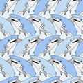 Cute sharks pattern. Nautical seamless print. Sea life vector illustration. Hand drawn background. Smiling shark background Royalty Free Stock Photo